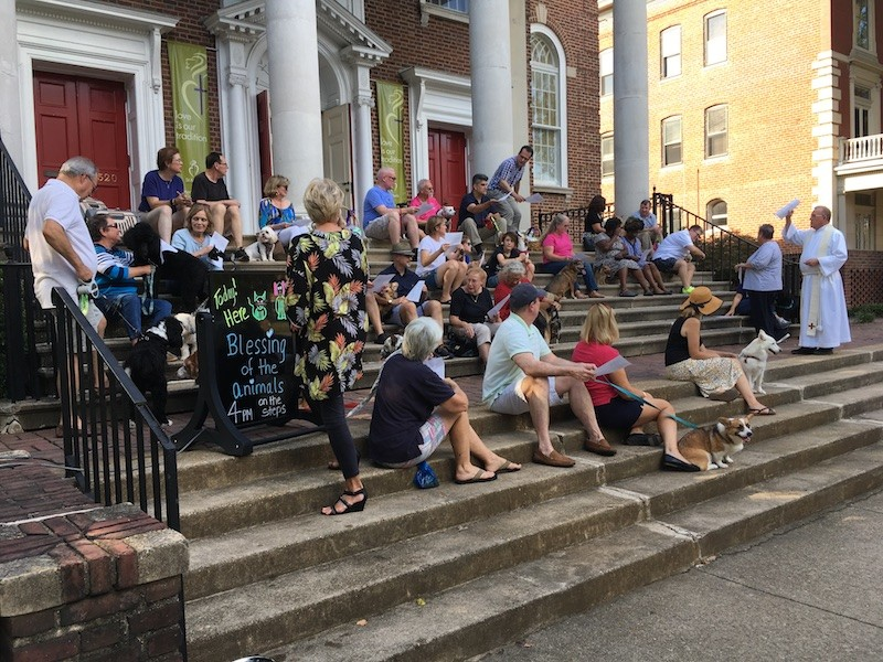 Blessing of the Animals 2018